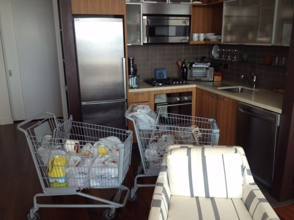 shopping-carts-in-nyc-apartment