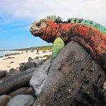 Удивительный отдых на Галапагосских островах