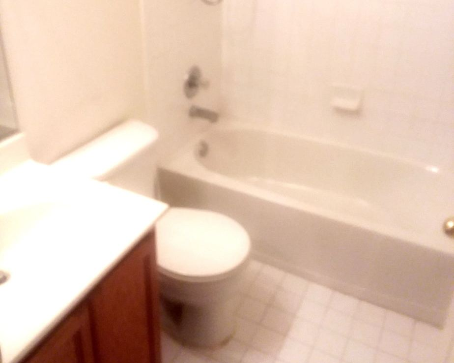 1602 SHADY GLEN DRIVE, DISTRICT HEIGHTS, MD 20747 Main Bathroom 2nd shot