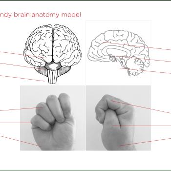 Mózg na TAK