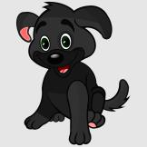 kleiner_Hund_schwarz