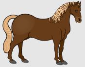 Pferd_braun