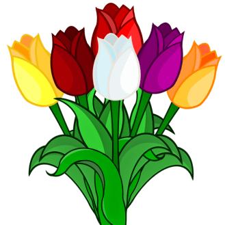 Tulpen_Tulpia