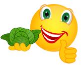 Smiley_Salat