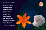 Im Garten im Mondlicht – Justinus Kerner