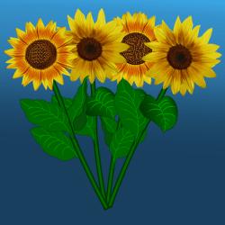Sonnenblumenstrauss_2