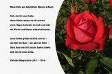 Diese Rose von heimlichen Küssen schwer – Christian Morgenstern