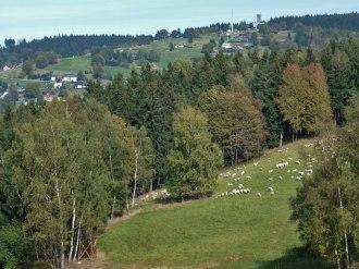 Aschberg 1