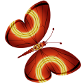 Schmetterling 10