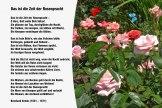 Das ist die Zeit der Rosenpracht – Bernhard Scholz