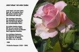 Jetzt träum ich viele Lieder – Friederike Kempner