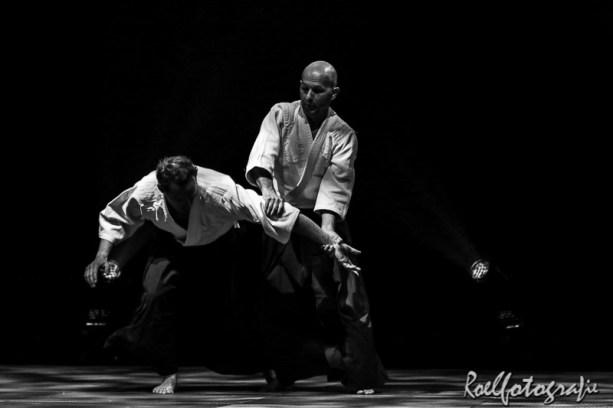 Gevechtskunsten Budo Ryo 2015 - roelfotografie-101