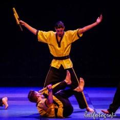 Gevechtskunsten Budo Ryo 2015 - roelfotografie-1683