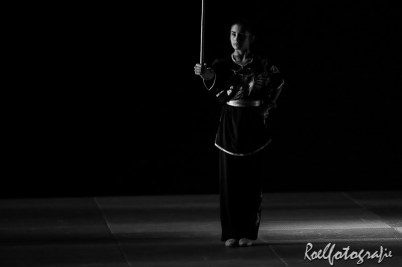 Gevechtskunsten Budo Ryo 2015 - roelfotografie-1836