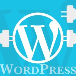 WordPress Plugins: Lo que necesitas para desarrollarlos