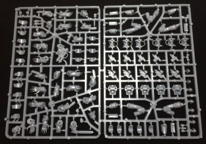 The terminator sprue. There's one of this and houses the five Cataphractii terminators.
