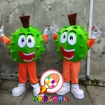 Indonesia Mascot Manufacturer of Durian
