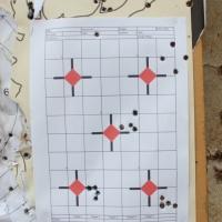 Elaboracja na zbiorówki - Hornady .308 Round Nose 180gr