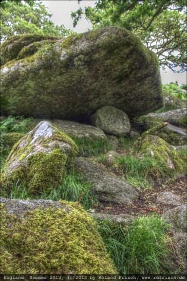 england2013-wistmanswood-3543mantiuk06