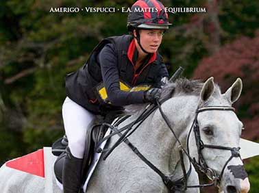 2016 World Equestrian Brands Print Catalog