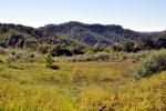 """Mountaintop """"reclaimed."""" Near Hookersville, WV"""