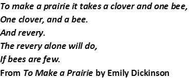 Dickinson poem