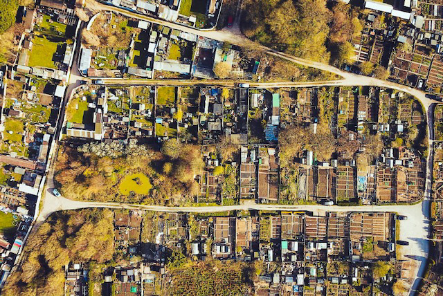 Allotment in the Wirral, UK
