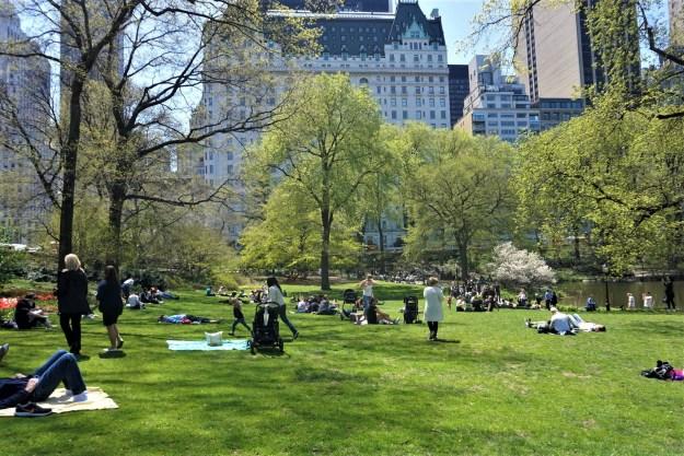 Central Park 5-1-2018.jpg