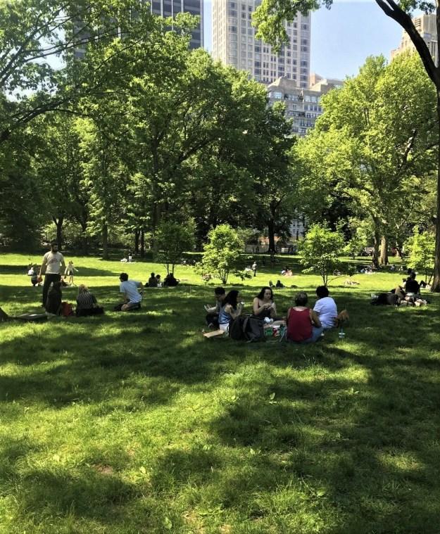 Central Park 2-47 p.m. 5-19-2019