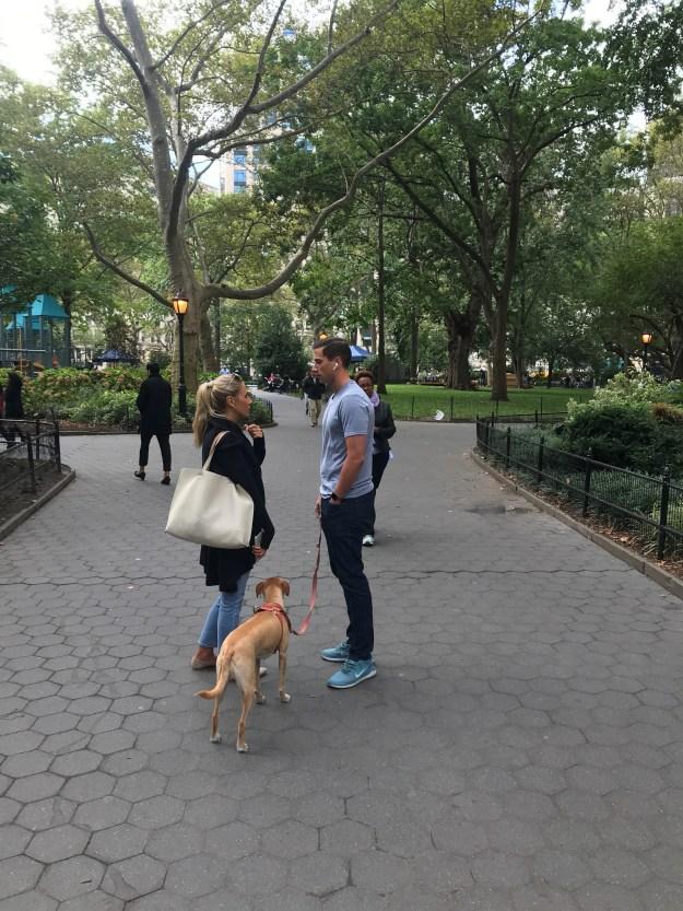 Madison Square Park 10-10-2019.JPG