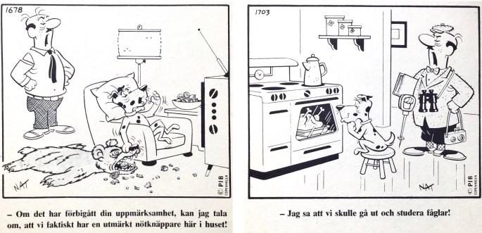Ett par skämtteckningar med Belvedere, ur Comics nr 1. ©PIB