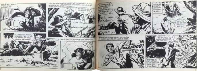 Ett uppslag med Jak - djungelpojken ur Veckans serier, nr 3, 1972. ©IPC