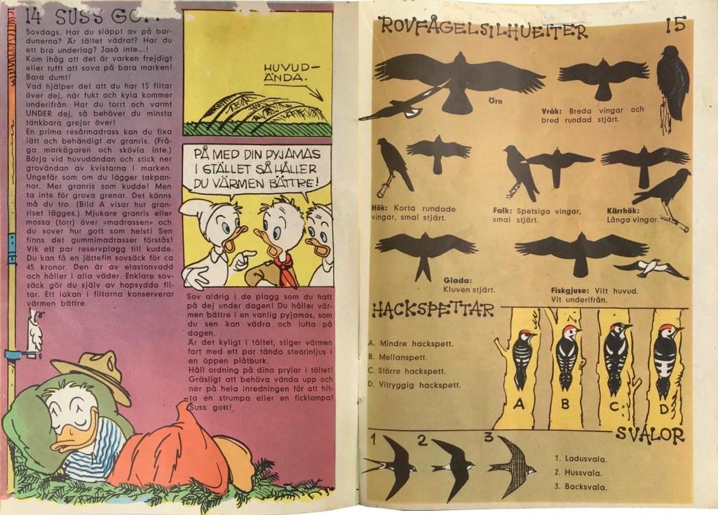 Sidan 14-15: Suss gott…, Rovfågelsilhuetter. ©Hemmets Journal