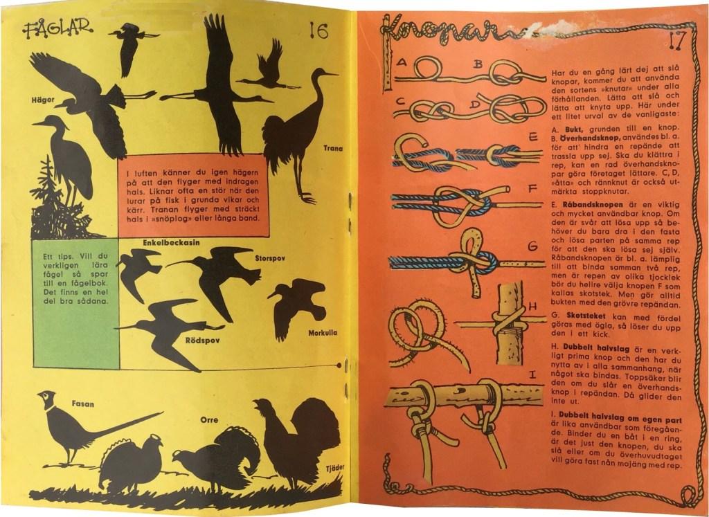 Gröngölingens handbok:  Sidan 16-17: Fåglar, Knopar. ©Hemmets Journal