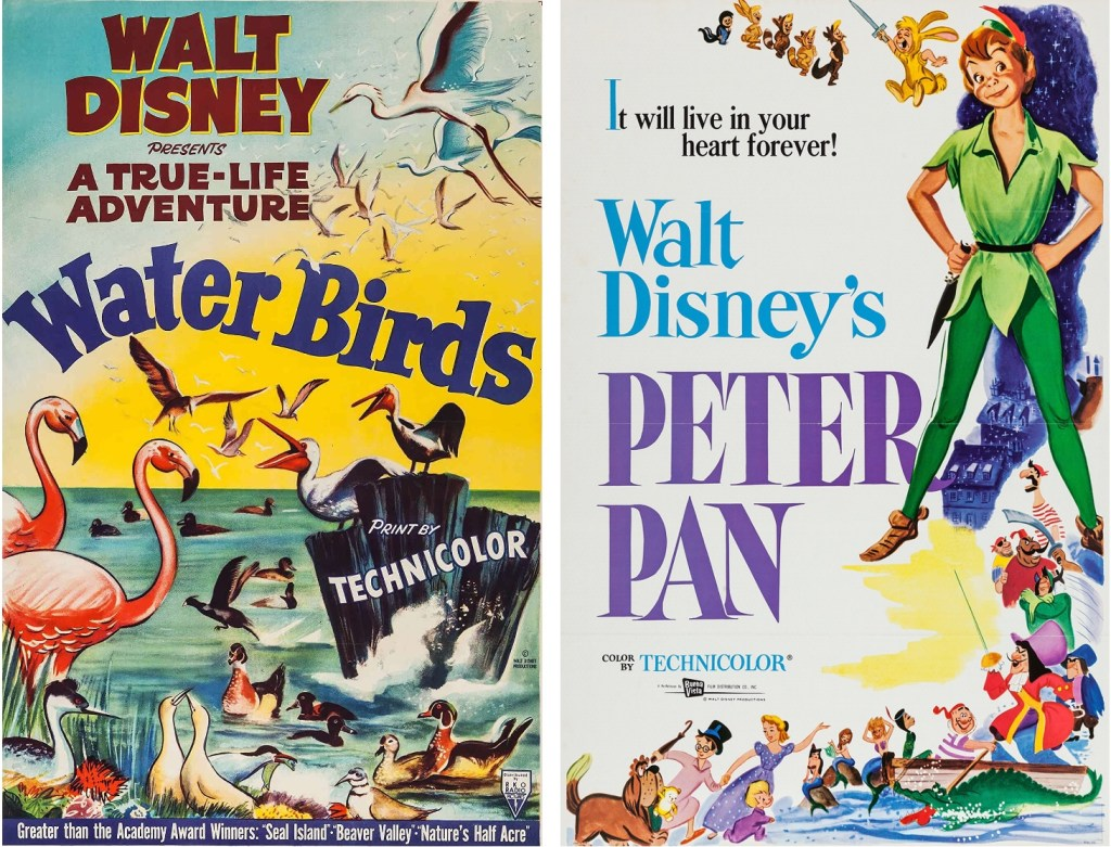 Filmaffischer i original till Sjöfåglar (Water Birds, 1952) och Peter Pan (1953). ©RKO/Disney