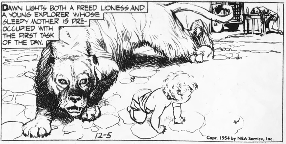 Lejonet är löst, en serieruta från 5 december 1954. ©NEA