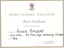 Swimming Merit 2