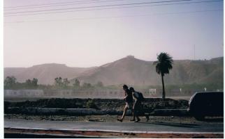India31
