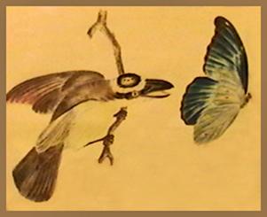 ravenous bird resizedbird