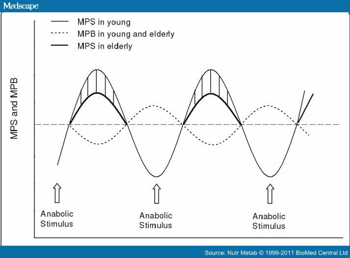 compare anabolic and catabolic processes
