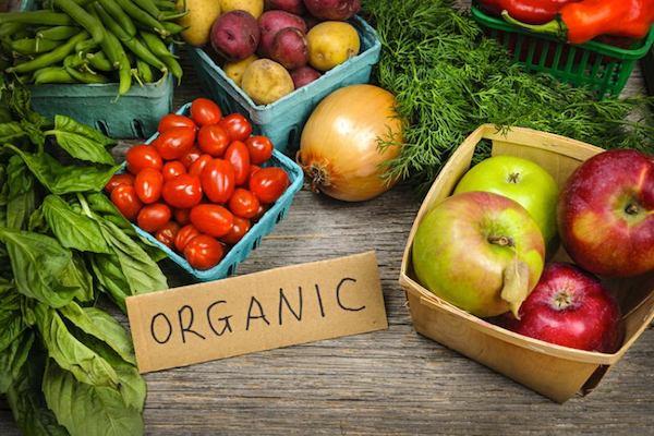 Výsledok vyhľadávania obrázkov pre dopyt organic food