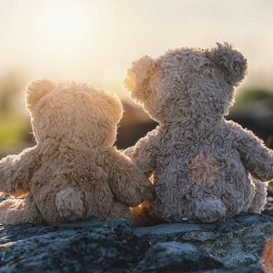 Teddy Bears Sunset 600