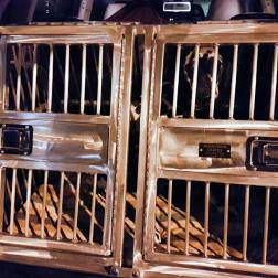 RandomsTravels takes a lot of road trips, and this custom made dog crate is perfect for safe and comfortable travels. with Roguetrippers.