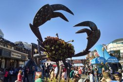 With many attractions, Fisherman's Wharf is the perfect place for Roguetrippers to visit I'm a 48 hour itinerary.