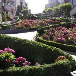 The crookedest street in San Francisco is Lombard Street - you can easily make it to visit here in a 48 hour itinerary.