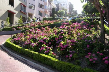 The beauty of Lombard Street is a huge attraction for visitors to San Francisco.