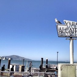 View point for Alcatraz Island at Fisherman's Wharf. You can plan a trip / tour to 'The Rock' here.