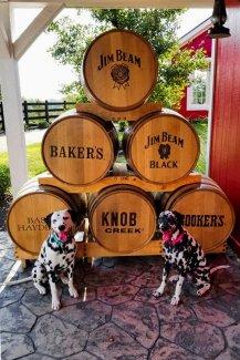 Random and Hazzard visit the Bourbon Trail in Kentucky