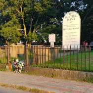 Dalmatians-visit-Old-Burying-point-cemetery-Salem