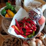 Farm-Fresh-Produce-Lynn-River-Farm-Perth-County